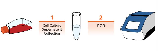 Abm Cell Culture